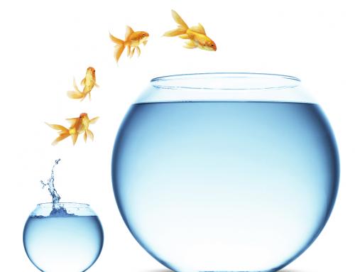 Snelcursus innovatiekracht in 4 stappen