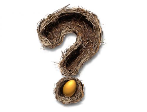 Op zoek naar het gouden ei: de juiste vragen voor de introductie van nieuwe business